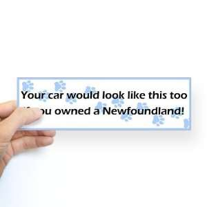 Your Car Newfoundland Funny Bumper Sticker by