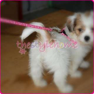 Pink small Dog Chihuahua Pet Leash & Harness Tool new