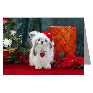 Shih Tzu Christmas Santa Peaches Greeting Cards P Pets Greeting Cards
