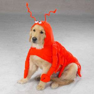 LOBSTER PAWS Dog Pet Halloween Costume XS S M L XL
