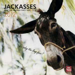Animal Calendars Jackasses   12 Month   11.7x11.7 inches