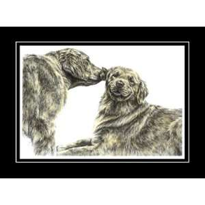 Golden Retriever Dogs Art   Limited Edition Print