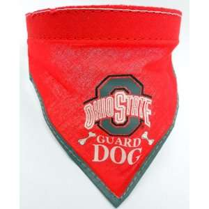 Ohio State Buckeyes Football Pet Dog Collar with Scarf