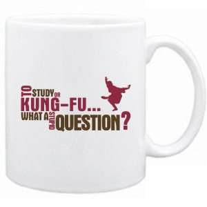 New  To Study Or Kung Fu  What A Stupid Question