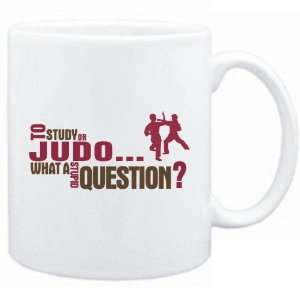 New  To Study Or Judo  What A Stupid Question ?  Mug