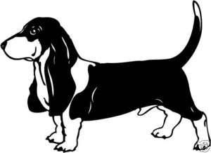 Basset Hound Vinyl Decal Sticker Car Wall Laptop
