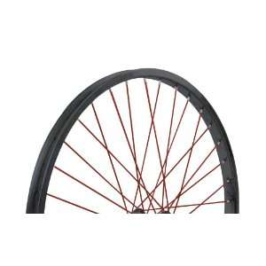 Nirve Rear Cruiser Bike Wheel (Black/Red, 26 x 1.75, 1 Speed Coaster